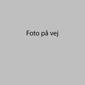 Foto på vej(1)